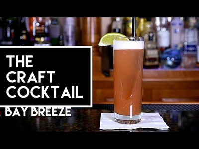 How To Make The Bay Breeze Cocktail | Bartending 101 ???? The Craft Cocktail