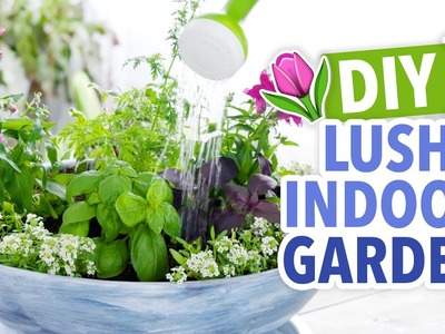How to Plant a Tabletop Garden - HGTV Handmade