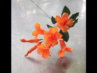 How to make Trumpet creeper flower by creppe paper