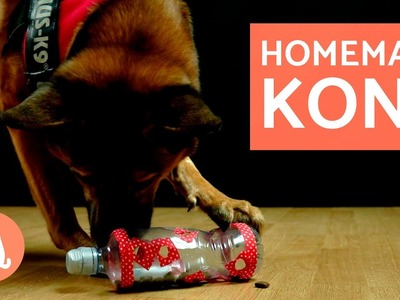 DIY Dog Toys - Kong Toy for Dogs