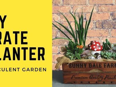 Succulent Garden in DIY Vintage Crate. Yabani Gardens