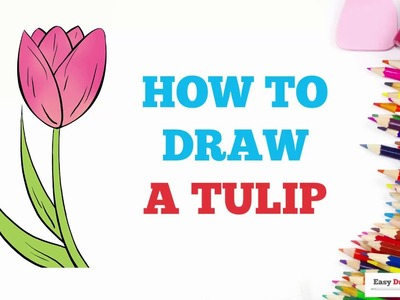 How to Draw a Tulip in a Few Easy Steps: Drawing Tutorial for Kids and Beginners