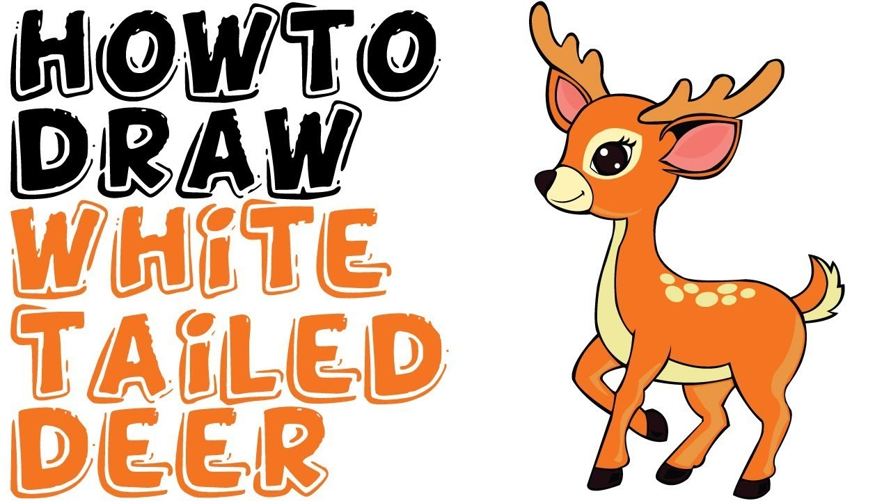How To Draw A White Tailed Deer Easy For Kids Step By Step