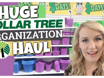 DOLLAR TREE ORGANIZATION HAUL || Dollar Tree Ideas & Tips || The Family Fudge