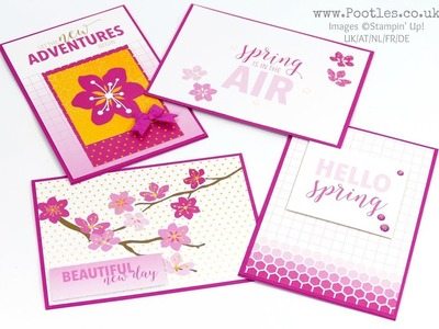 Stampin' Up! Memories and More 20 card showcase