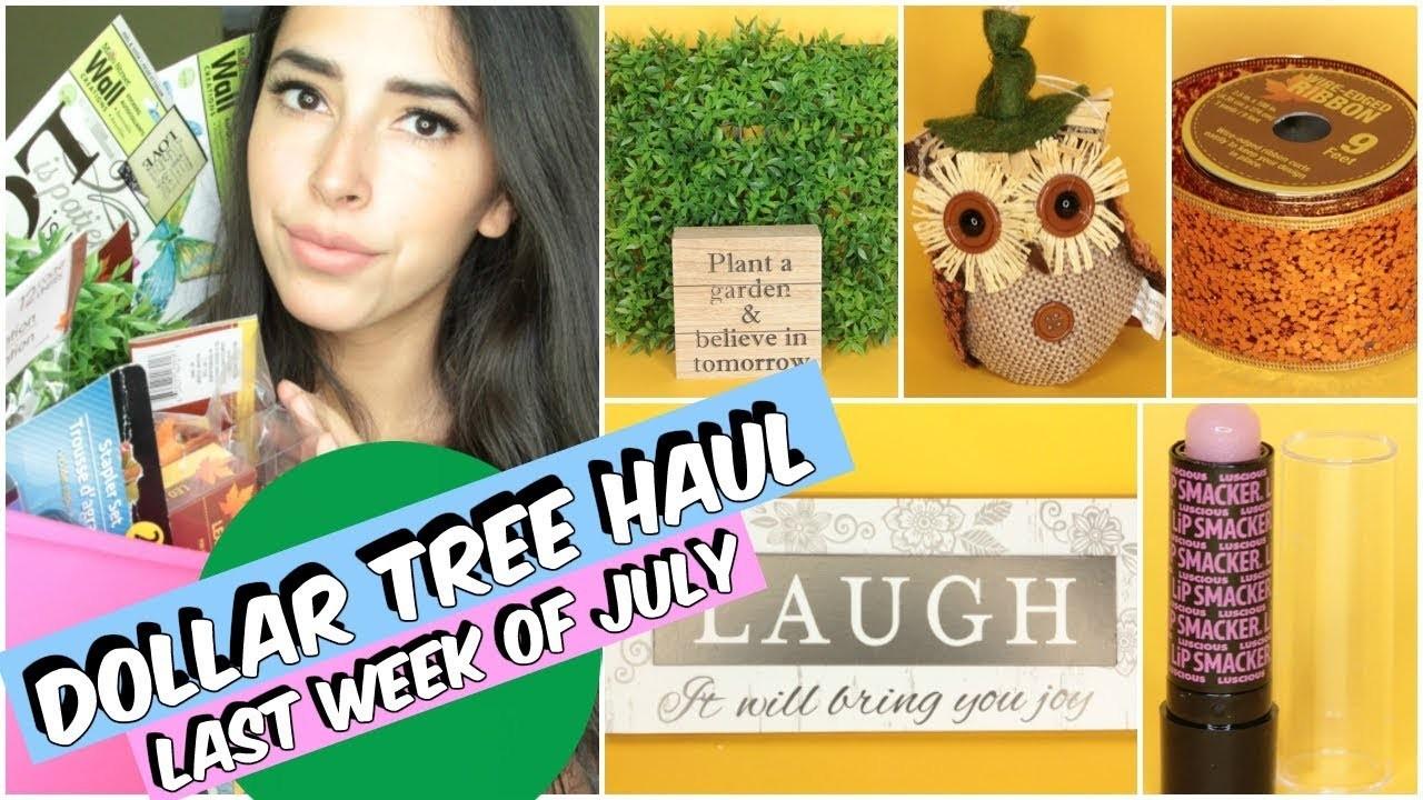 DOLLAR TREE HAUL JULY 2017 NEW ITEMS