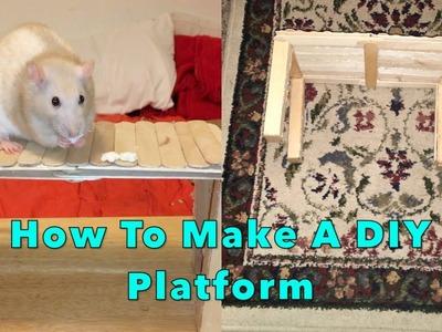 DIY Platform For Rats
