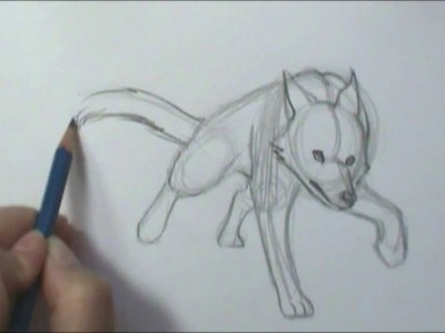 How to Draw Motion  Wolf Running
