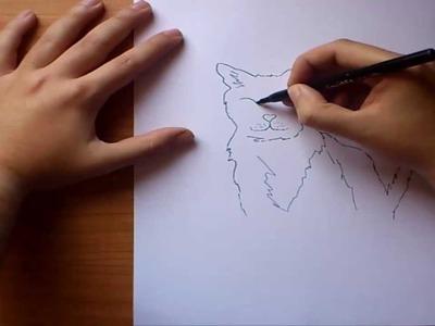 Como dibujar un gato paso a paso | How to draw a cat
