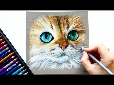 Drawing a photorealistic cat portrait with pastel pencils | Leontine van Vliet