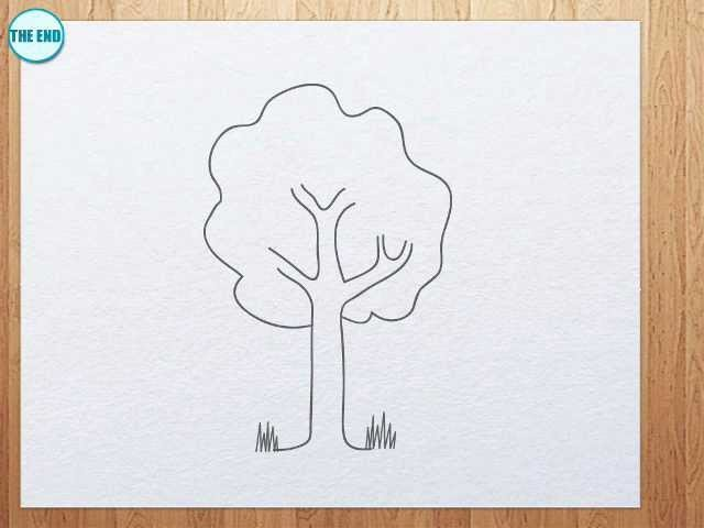 How to draw a tree for kids