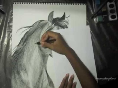 MOVED CHANNELS, SEE DESCRIPTION: Arabian Horse Speed Drawing
