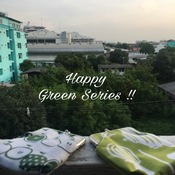 Pigpag Japanese Cotton Bag : Green Series