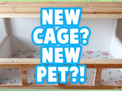 Building A Wooden Cage | Preparing For Another Pet! ???? | Part 1.3
