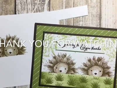 Hedgehog Cuteness w.Stampin Up! Painted Harvest