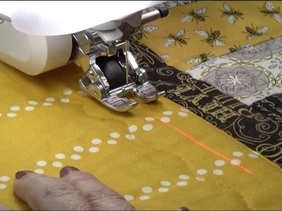 Pat Sloan Sewlebrity Love of Sewing Challenge Using the Digital Dual Feed