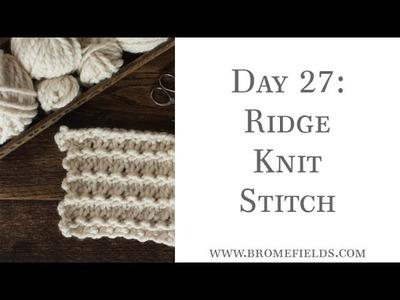 Day 27 : Ridge Knit Stitch : #100daysofknitstitches