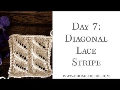 Day 7  Diagonal Lace Stripe Knit Stitch