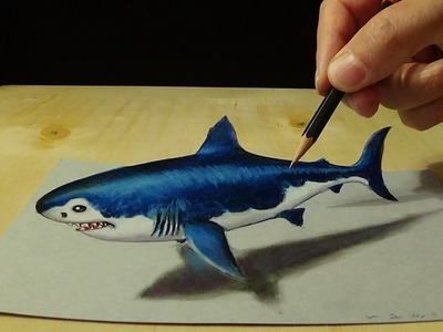 Drawing 3D Shark - How to Draw 3D Megalodon Shark - Awesome Trick Art