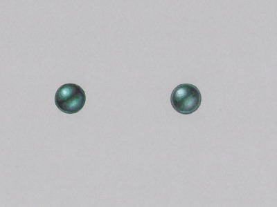 How to draw a tahitian pearl