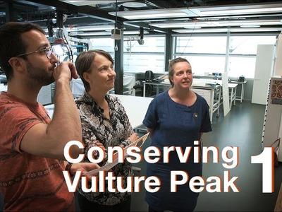 Conserving Vulture Peak I Episode 11: The results