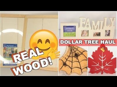 DOLLAR TREE HAUL 2017 NEW ITEMS