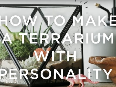 How To Make A Terrarium With Personality | west elm