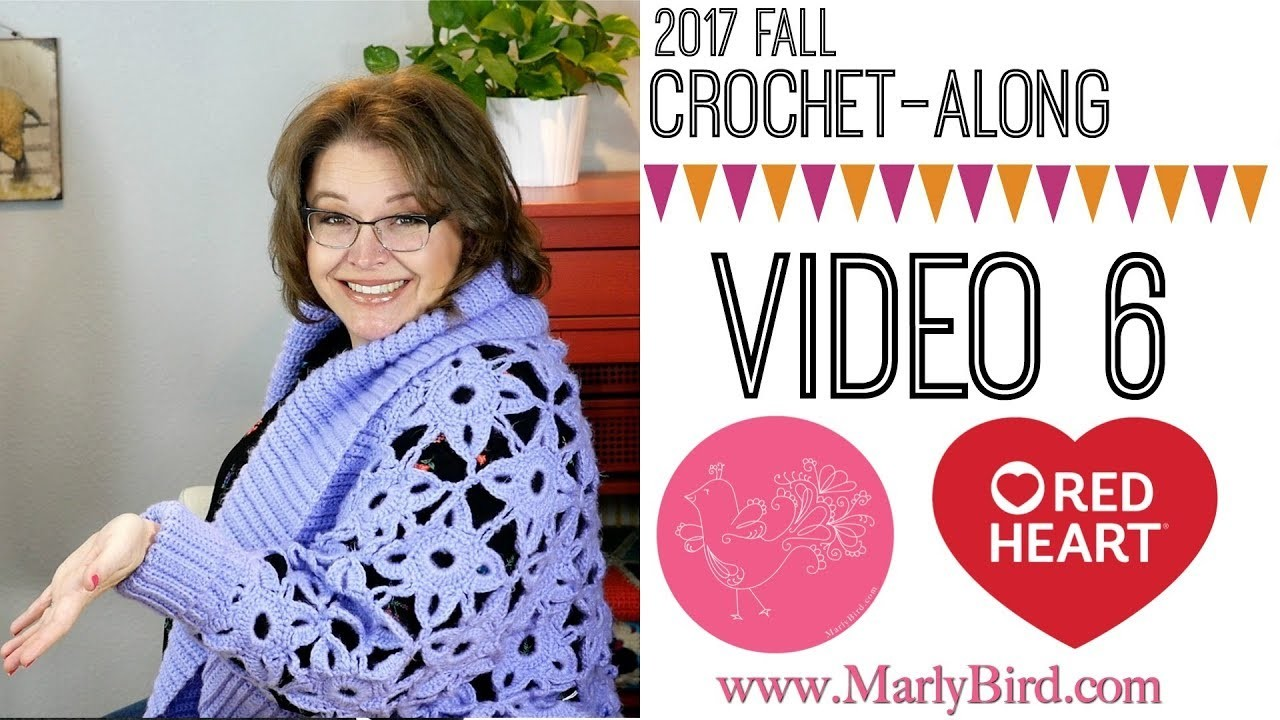Crochet Along Video 6