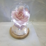 Enchanting light up rose made to order