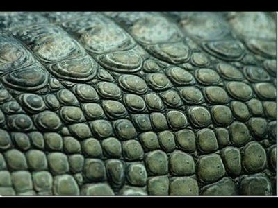 Greenstuff tutorial #2 scales