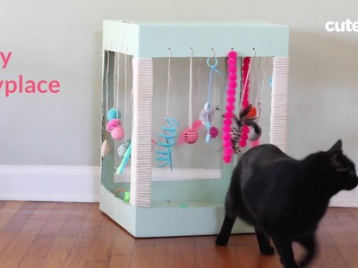 How to Build a Kitty Play Place - Cuteness.com