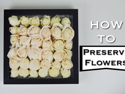 How To: PRESERVE FLOWERS