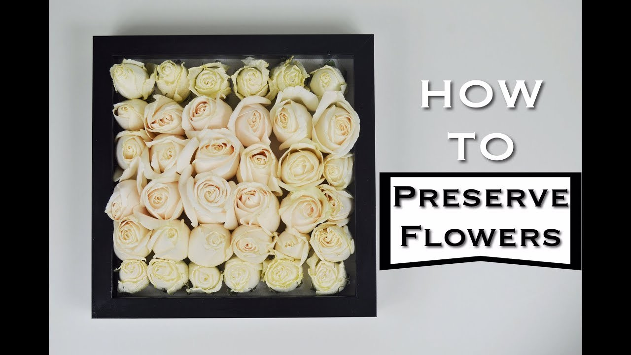 How To Preserve Flowers
