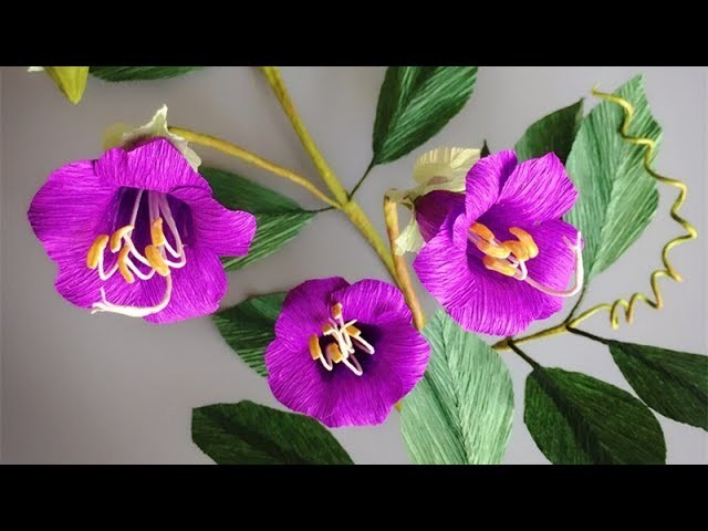 ABC TV   How To Make Cobaea Scandens Paper Flower From Crepe Paper - Craft Tutorial