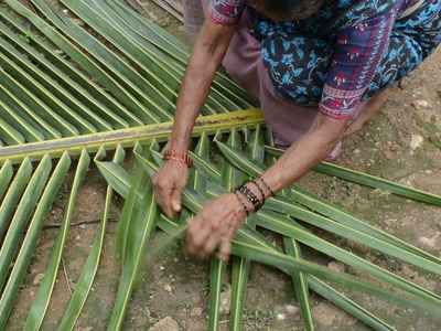 How to weave Coconut Leaf for Making House Walls [HD]