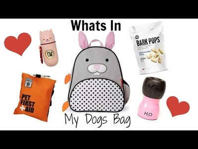 What's In My Dog's Bag