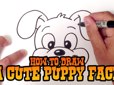 How to Draw a Cute Puppy Face - Step by Step