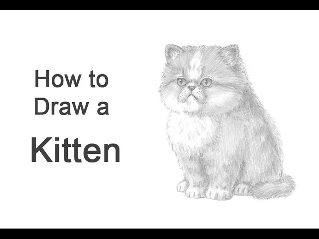 how to draw realistic poop