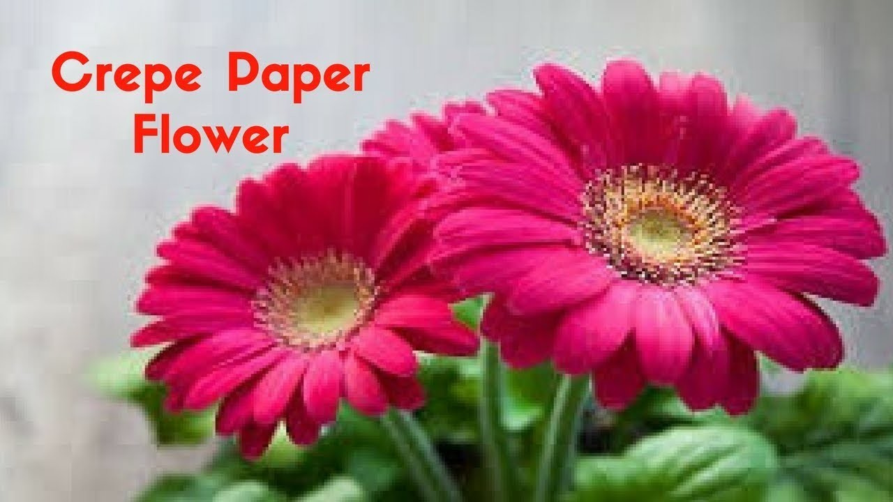 How To Make Crepe Paper Flowers For Home Decoration Home Decor Ideas