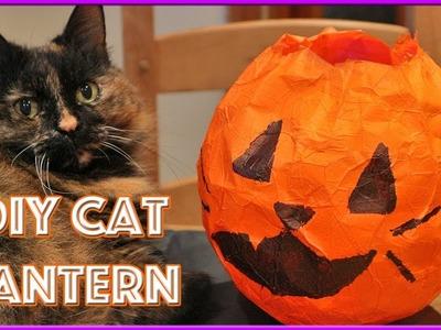 How To Make Halloween Lantern | DIY Cat Jack'o Lantern | Easy DIY Paper Cat Lantern!