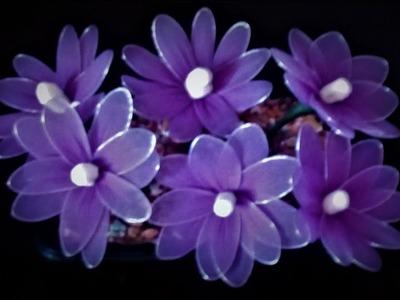 How to make Nylon ,Stocking Flowers# Easy Stocking Flower Tutorial  by Shital Mahajan.