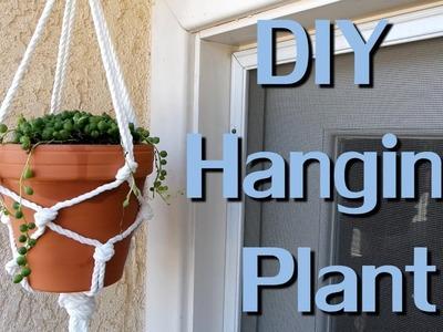 DIY Macrame - Hanging succulent plant