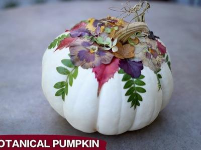 DIY Botanical Pumpkins! ????????????. Garden Answer