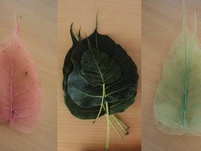 DIY-Art Attack   Convert Direct Colored Skeleton Leaf.