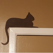 Door frame cats