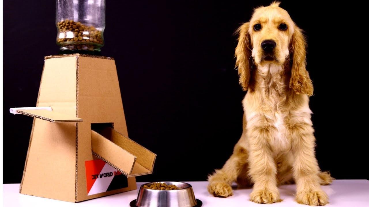 Diy Puppy Dog Food Dispenser With Cardboard