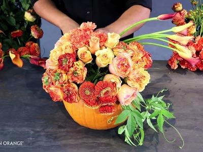 Pumpkin Patchwork: Behind the Scenes