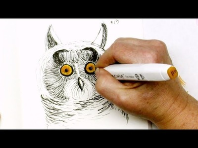 Easy Drawing Tutorial How to Draw a Long Eared Owl