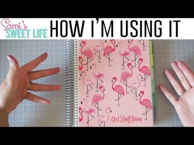 How I'm Using My Monthly Plum Paper Planner