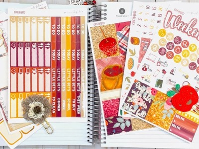Recollections Spiral Planner Plan With Me November 6-12 featuring Pomegranatestickerco